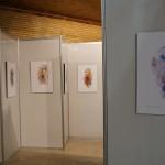 Expo Tropismes au Festival international d'animation de Téhéran
